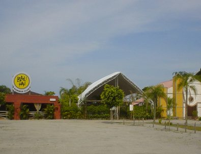 Bali Hai Summer Club